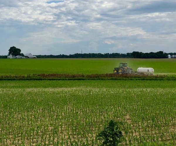 Corn prices rise as relentless rain wipes out crops