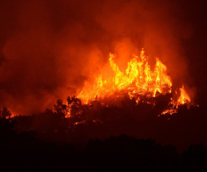 Firefighter dies combatting California wildfire