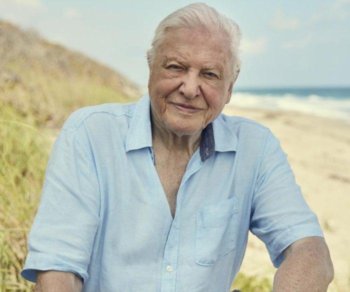 Global audience for nature docs expanding, says David Attenborough