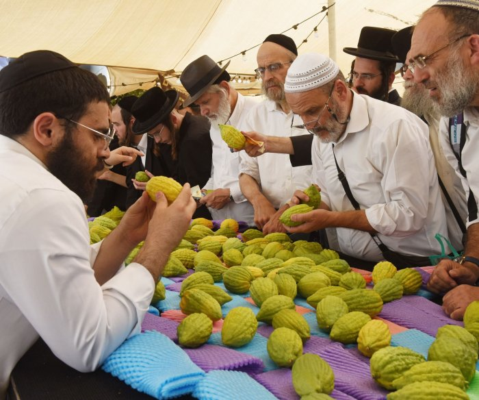 Moments from preparation for the celebration of Sukkot in Jerusalem