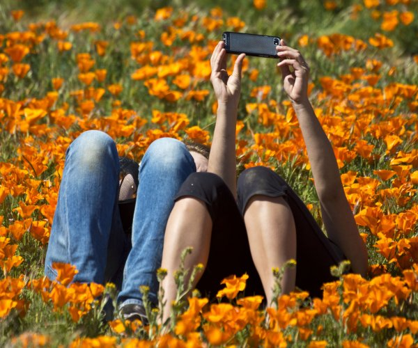 Superbloom phenomenon brings flowers and tourists to Southern California