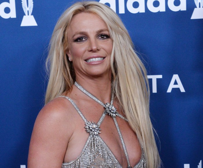 Britney Spears, Wanda Sykes attend the GLAAD Awards