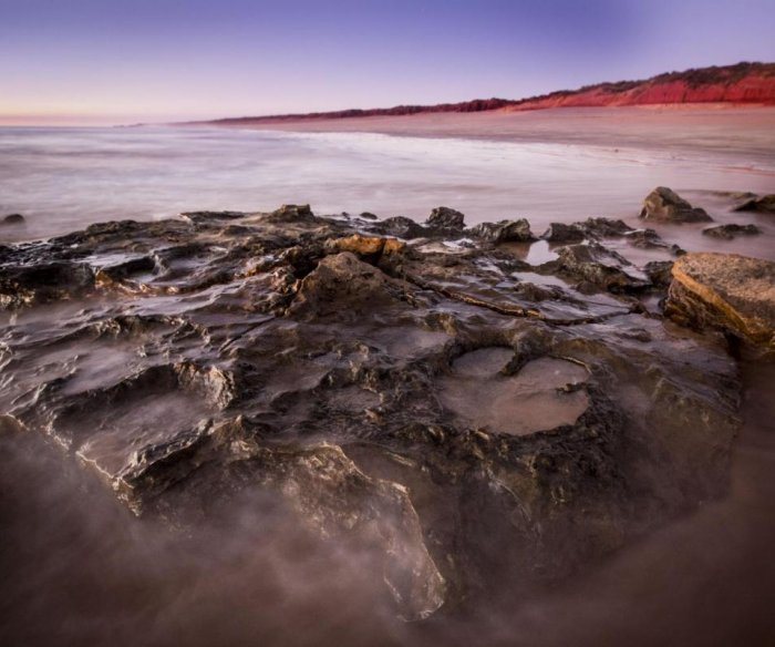 Diverse array of dinosaur tracks mark Australia's 'Jurassic Park'