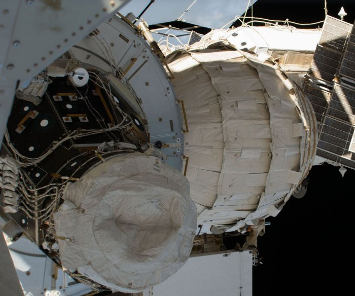 Microorganisms may be living outside space station