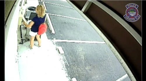 Circuit breaker thief identified from CCTV footage