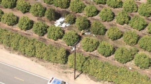 Small plane crash kills 2 in Ventura County, Calif.