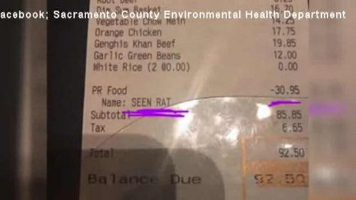 Watch: Seeing a rat earns eatery patron a $30.95 discount