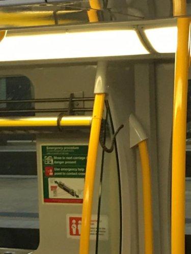 Stowaway-snake-dangles-from-luggage-rack-on-Australian-train