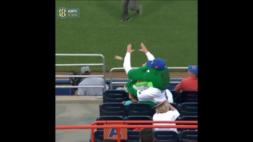 Florida-Gators-mascot-uses-head-to-protect-boy-from-foul-ball