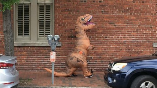 Police:-Carriage-driver-injured-when-'dinosaur'-spooked-horses