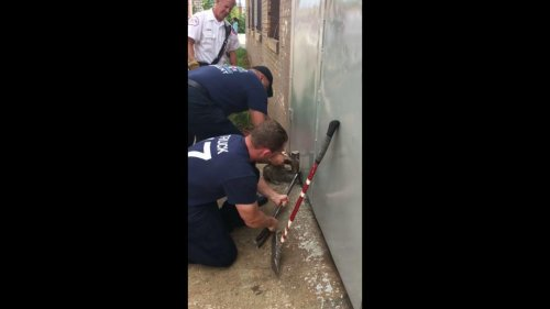 Fire-crew-rescues-cat-with-head-trapped-under-metal-door