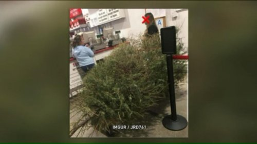 Woman-returns-'dead'-Christmas-tree-to-Costco-for-full-refund
