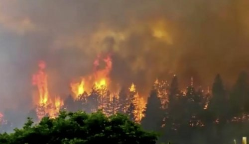 Colorado-wildfire-grows-to-22,000-acres,-closes-forest