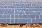 Minnesota military base to host solar farm