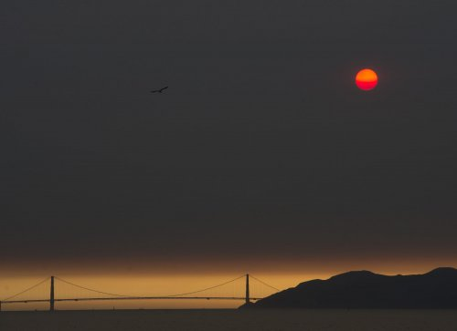 California-wildfires:-23-dead,-hundreds-missing-as-concern-for-air-quality-grows