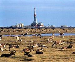 U.S. eyes lease sale, balance, in Alaska