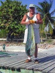 Mahi-mahi exposed to BP oil spill swim slower
