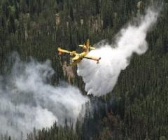 Canada fires force thousands to evacuate