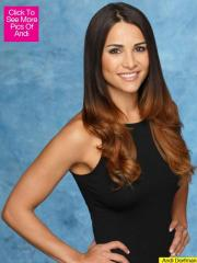 Andi Dorfman named new 'Bachelorette'