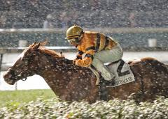 UPI Thoroughbred Racing Roundup