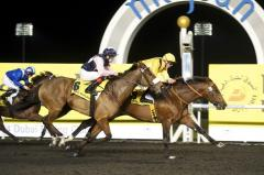 Breeders' Cup Classic winner returns to action Saturday