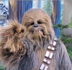 Chewbacca actor Peter Mayhew to return for 'Star Wars: Episode VII'