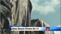 Thousands of bees escape truck in Florida