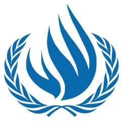 U.N. investigators catalog war atrocities in Syria