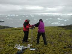 Antarctic moss resurrected after 1500 years frozen in permafrost