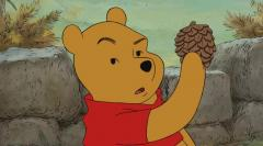 Polish city bans Winnie-the-Pooh at playgrounds, claiming 'dubious' sexuality