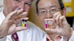 Fluorescent feces test may detect colorectal cancer