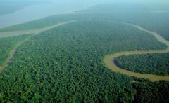 Energy work slated for Amazon jungle