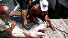 Texas fisherman hauls in 809-pound shark in Gulf of Mexico