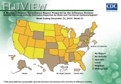 CDC: 10 states report widespread seasonal flu activity