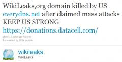 Domain name provider cuts WikiLeaks ties
