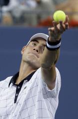 Djokovic-Isner match opens Davis Cup series