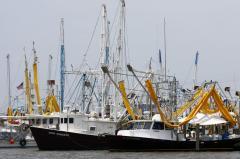 BP money, not oil, spilling over Gulf