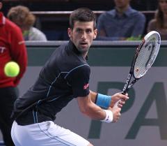 Djokovic, Berdych win; Davis Cup tied 1-1