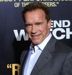 Schwarzenegger book has details on affair