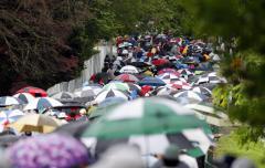 Global precipitation changes linked to human activites