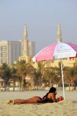 Ministers: No big Dubai fallout for India