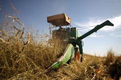 $1 trillion U.S. farm bill to include $9 billion in food stamp cuts