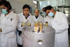IAEA: Iran has diluted its 20 percent enriched uranium stockpile