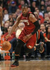 Miami Heat's Dwyane Wade has knee surgery