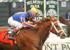 180 horses entered for Breeders' Cup