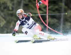 Austrian Hannes Reichelt wins men's downhill