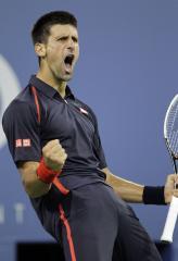 Djokovic returns to Australian Open final