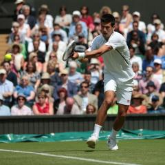 Djokovic through to Wimbledon second round