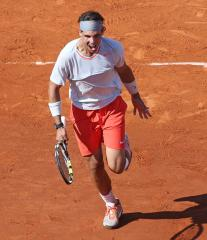 Nadal, Ferrer gain French Open final spots