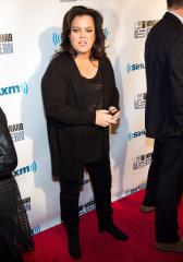 Rosie O'Donnell calls Lindsay Lohan's reality show a 'tragedy on every level'